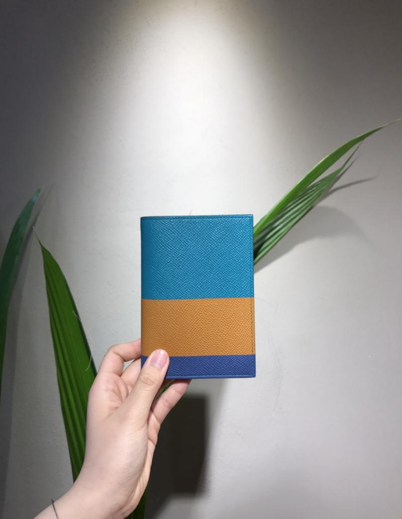 Hermes - Passport Holder (Colour)